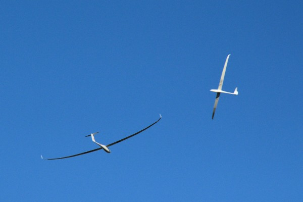 Two gliders in a thermal